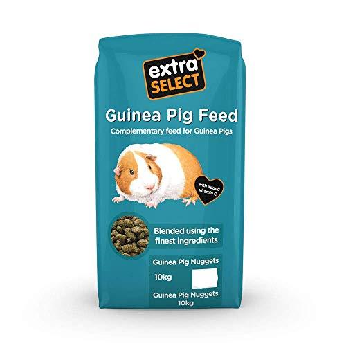 Roffie Futterautomat Katze, Hund Essen Spender zum Klein Haustiere mit Verteilung Alarm, Portion...
