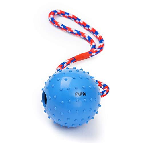 PetPäl Ball mit Seil Naturkautschuk - WurfballHundespiel-Ball mit Schnur - Hundeball Ø 7cm - Bälle...