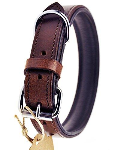 Schnüffelfreunde Hundehalsband aus Leder (S - 24-30cm, Braun)