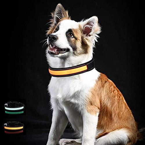 Toozey LED Leuchthalsband für Hunde mit 3 Beleuchtungsmodi, Einstellbare Länge und USB Aufladbar und...