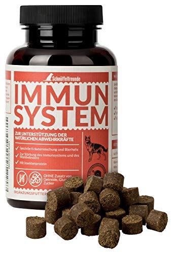 Schnüffelfreunde Immunsystem I Vitamine, Mineralien und Nährstoffe für Hunde zur Unterstützung der...