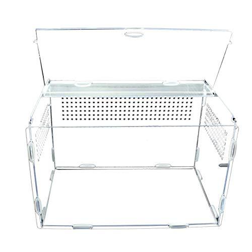 CHAODI Reptil Fütterungsbox, 3 Größen Acryl Insekten Fütterungsbox Transparente Reptilien Haustier...