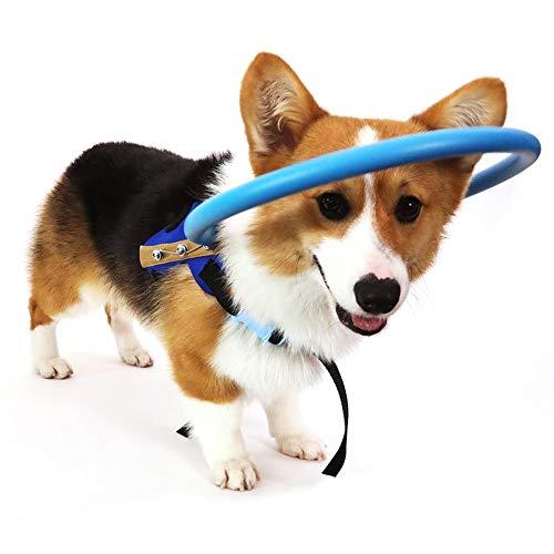 RUNMIND Blind Hundegeschirr Weste Blindhunde Schutzweste Ring für Hunde mit kranken Augen Haustier...