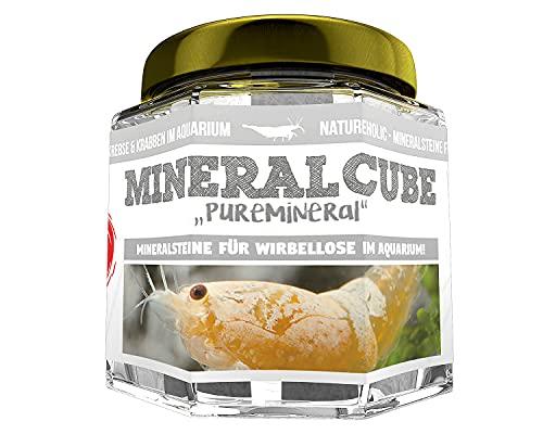 NatureHolic - MineralCube 'Pure Mineral' - 47ml - Mineralsteine für Garnelen, Schnecken & Krebse im...