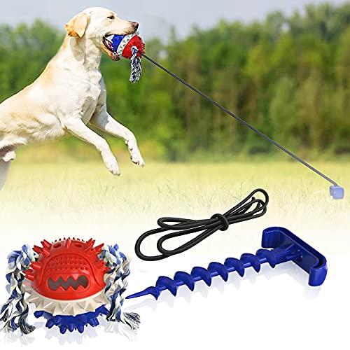 Hundespielzeug Hundezahnbürste, Kauspielzeug Für Hunde, Multifunktion Hund Toy Pet Spielzeug...