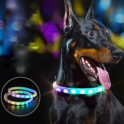 LED Leuchthalsband für Hunde USB Aufladbar 11 Beleuchtungsmodi,Längenverstellbareres,Wasserdichtes,LED...