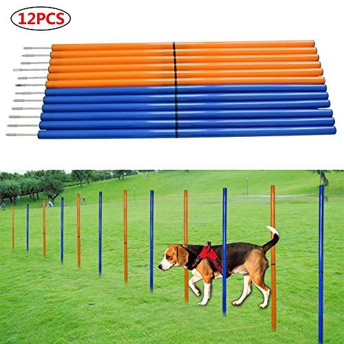 RTY Hunde-Agility-Ausrüstung, Hunde-Hindernisparcours für Geschwindigkeit und Sprünge, Training und...