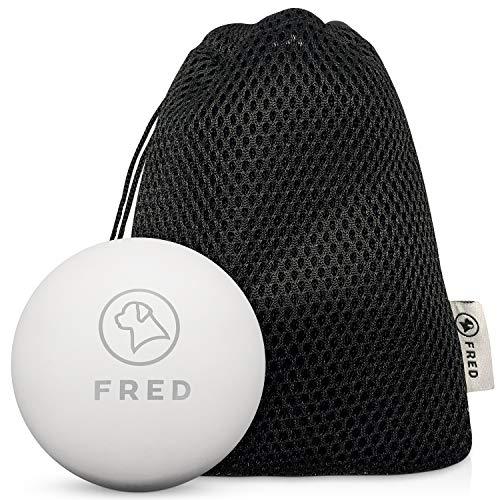 FRED Premium Hundeball aus Naturkautschuk - sehr robuster Hundespielball nahezu unkaputtbar- 6,5cm Ø...