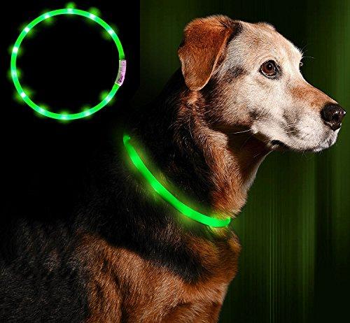 Anicoll LED Leuchthalsband Hunde Halsband USB wiederaufladbar - Längenverstellbarer Haustier Sicherheit...