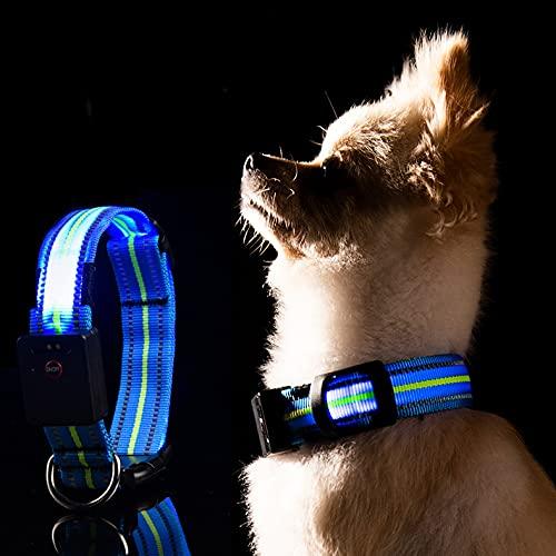 LKJYBG LED Leuchthalsband Hund, USB Wiederaufladbar Wasserdicht ,Sicherheitshalsband für Haustiere Mit...