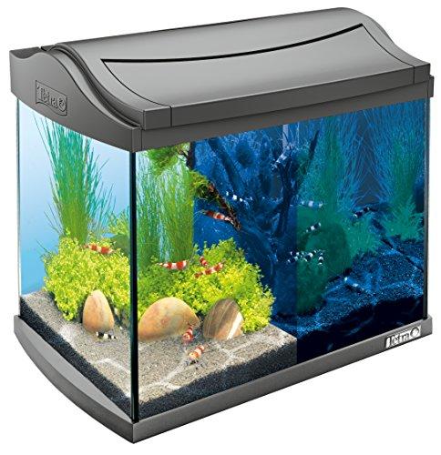 Tetra AquaArt Discovery Line LED Aquarium-Komplett-Set 20 Liter anthrazit (inklusive LED-Beleuchtung,...