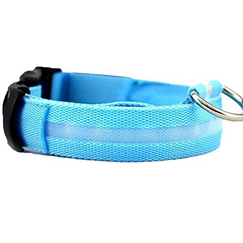 JVSISM LED Halsband Light - LED Leuchtschlauch Leuchthalsband Hundehalsband Hund (Blau, M)