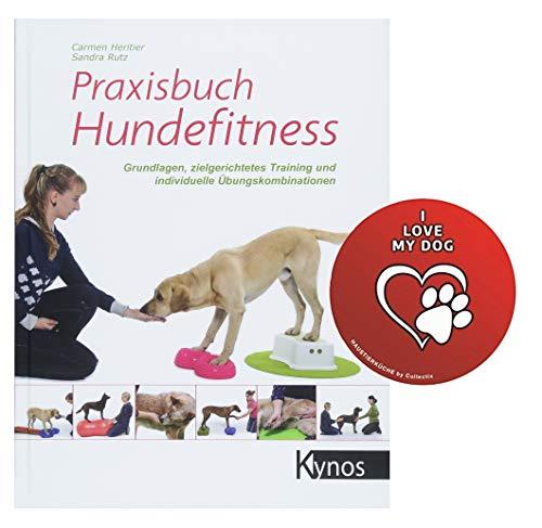 Praxisbuch Hundefitness: Grundlagen, zielgerichtetes Training und individuelle Übungskombinationen...