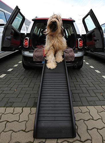 Lüllmann Auto Hunderampe klappbar Kunststoff Kletterhilfe 155 x 40cm bis 90kg 400281