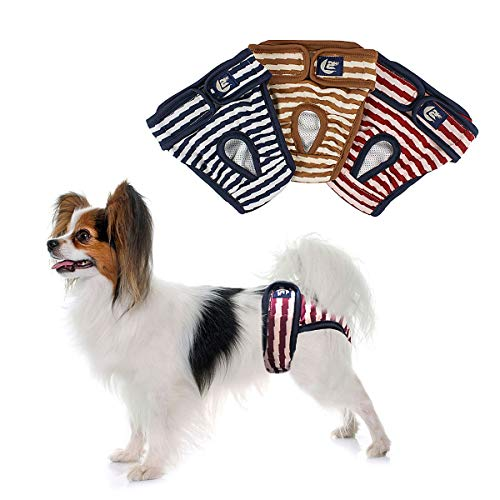 PETLESO Hundewindeln Hunde Schutzhöschen 3 Stück Waschbare Läufigkeitshose für Hündinnen-S