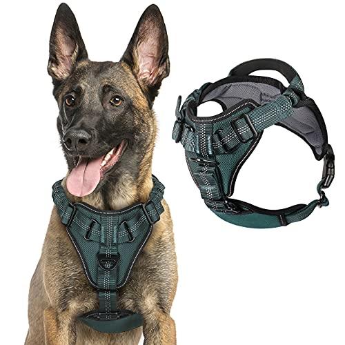 rabbitgoo Hundegeschirr für mittlere Hunde Anti Zug Geschirr, No Pull verstellbares Brustgeschirr,...