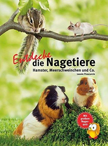 Entdecke die Nagetiere: Hamster, Meerschweinchen & Co. (Entdecke - Die Reihe mit der Eule /...