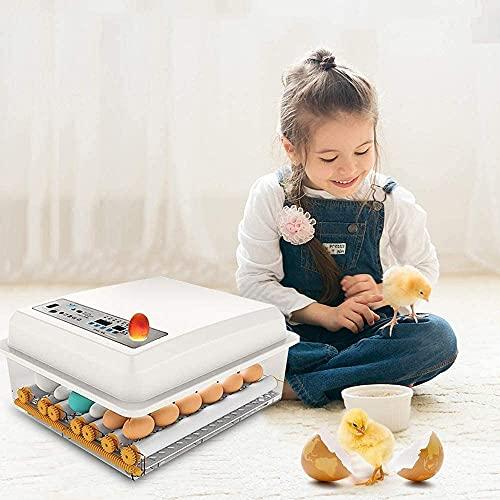 Kacsoo Eierbrutschrank Inkubator, Vollautomatische Brutmaschine 16-Eier-Brutapparat mit LCD-Display,...
