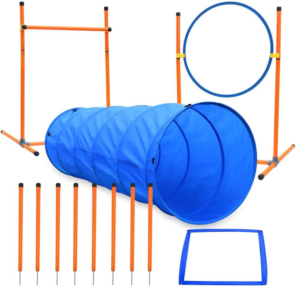 Ausrüstung für den Agility-Kurs für Hunde, Starter-Kit für das Agility-Training für Hunde, Spiele...