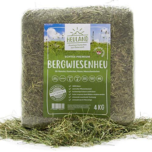 HEULAND® Premium Heu (1 x 4 Kg) Frisches Bergwiesenheu für Kleintiere Kaninchen Kräuter Hamster Streu...