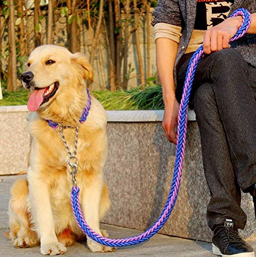 Doppelsträngiges Seil für große Hunde, Metall-P-Kette, Schnalle, nationale Farbe,...