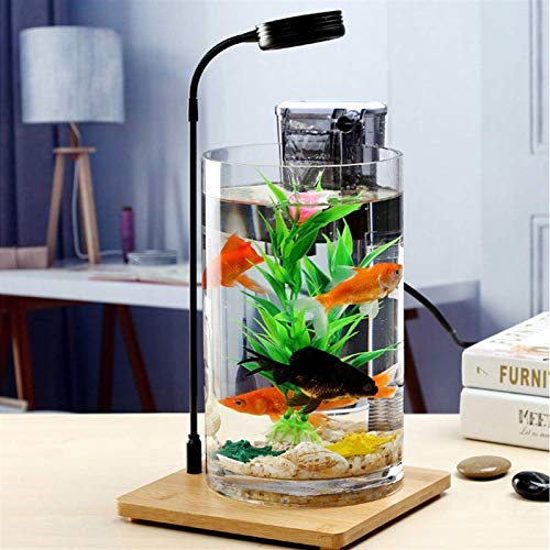MUMUCW USB-Desktop-Mini Fisch/Small Fry-Behälter-Aquarium mit LED Creative Glass...