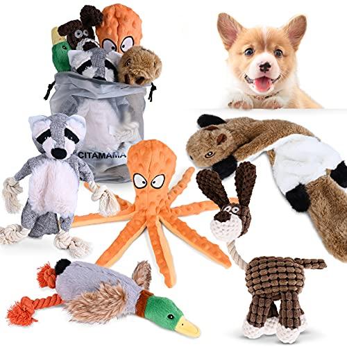 CITAMAMA Quietschendes Hundespielzeug, 5 Stück Hundeplüschspielzeug Kauspielzeug für Hunde...
