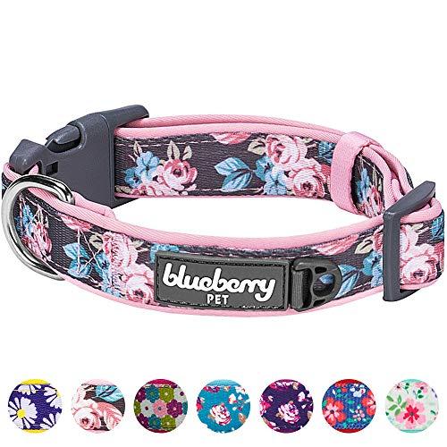 Blueberry Pet Gepolstertes Hundehalsband mit 6 Mustern, weich und bequem, mit Frühlingsrosen, für...