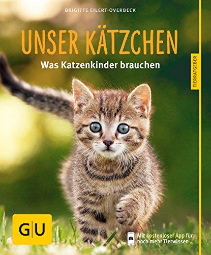 Unser Kätzchen: Was Katzenkinder brauchen
