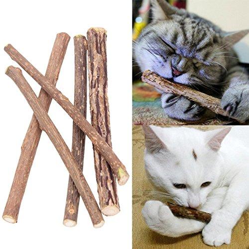 10 Stück Matatabi Katzen Kauhölzer Catnip Snacks Sticks Katzenminze Zähne Gesund Hygiene Zahnpflege...
