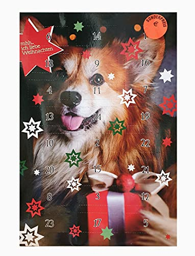 Hundeadventskalender Adventskalender Hunde Spitz
