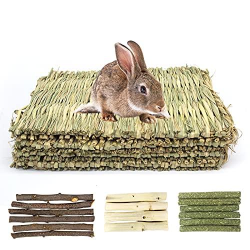 LLGLEU 4 Stück Handgewebt Kaninchen Grasmatte, Natürlich Kleintier Essbar Kauspielzeug Apfelstäbchen...