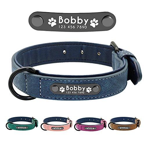 Didog Hundehalsband, weiches, gepolstertes, Leder, mit personalisierbarem, graviertem Namensschild,...