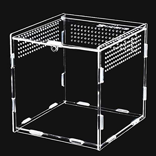Keweni Feeding Box, 360 ° Transparent Acryl Terrarium Behälter für Spide, Skorpion, Käfer,...