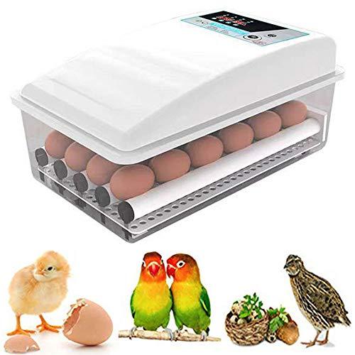 Beleuchtung Ei Inkubator, Brutmaschine Temperaturregulierung, Brutschrank Automatische Wendung Eier,...