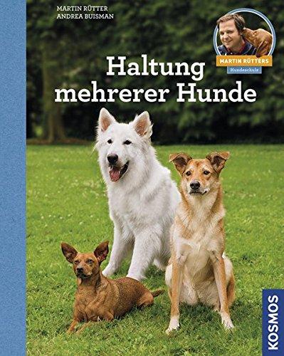Haltung mehrerer Hunde: Martin Rütters Hundeschule