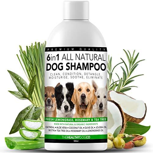 Alles Natürlich 6 in 1 HundeShampoo | Zitronengras, Rosmarin und Teebaumöl | 500ml | Reinigt,...