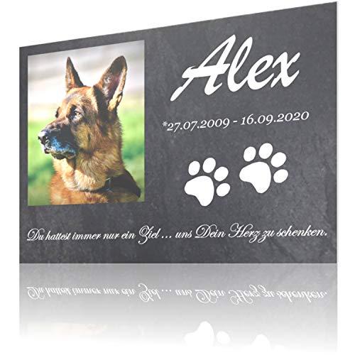SCHILDER HIMMEL Gedenktafel für Hund & Katze mit Foto Wunschbild und Wunschtext, 21 x 15cm und Größer