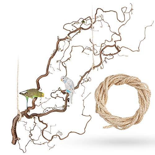 Große Korkenzieherhasel Sitzstange zum Aufhängen mit toll verschnörkelten Zweigen | Der wohl Beste...
