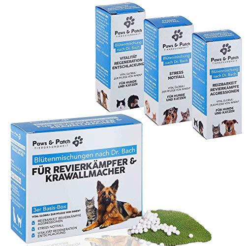 Paws & Patch Bachblüten 3er Basis-Box für REVIERKÄMPFER & KRAWALLMACHER, für Katzen & Hunde, bei...