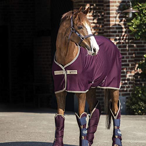 Horseware Abschwitzdecke Amigo Jersey Cooler fig/Navy tan 140cm