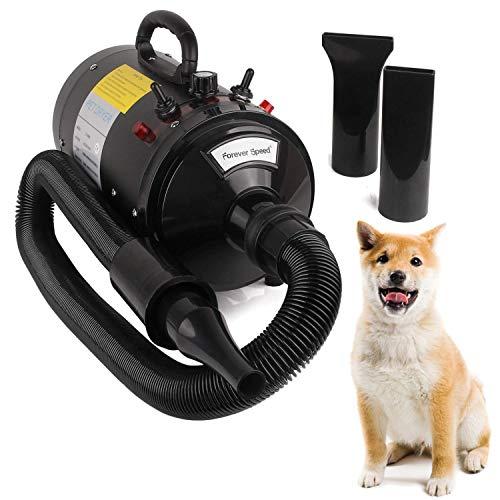 Miafamily Profi Hundefön Pet Dryer 2400W Low Noise Haustier Pflege Tierfön Hundetrockner (Europäischer...