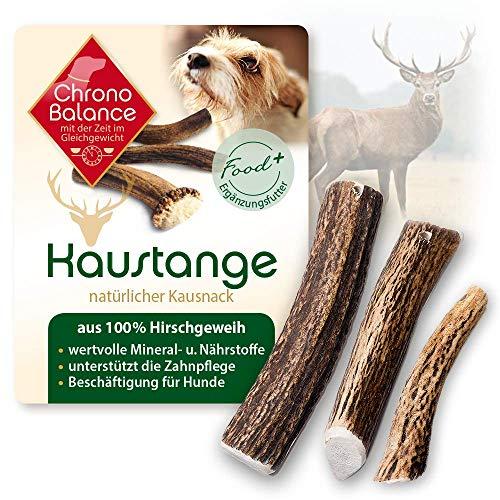 ChronoBalance® Geweih-Kaustange S (halbiert) für Hunde - 100% Hirschgeweih - Kauspielzeug, Zahnpflege,...