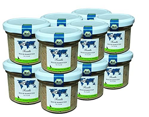 BIOPUR Bio Forelle, Reis & Karotten 12x100g [Premium Nassfutter] - 100% Bio Qualität - Hundenassfutter...