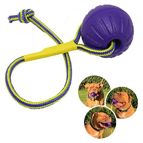 Rosi's Barf-Glück Premium Hundeball mit Seil ⌀ 7cm Hunde Wurfball Tau – Wasser Hundespielzeug Ball...