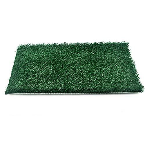HEXLONG Haustier-Rasen Spritzwassergeschützte Rasen Hund WC Matte ohne Wechsel einfacher zu reinigen...