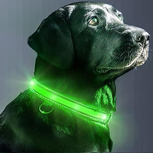 EVERSUNN LED Halsband Hund- USB Aufladbar mit Leuchthalsband Hunde Halsbänder Breit Sicherheit...