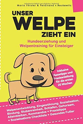 Unser Welpe zieht ein – Hundeerziehung und Welpentraining für Einsteiger:: Welpenentwicklung,...
