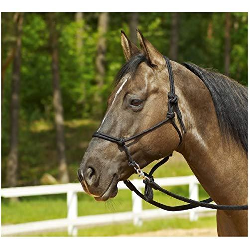 Knotenhalfter RINGE, Pony/Vollblut, schwarz