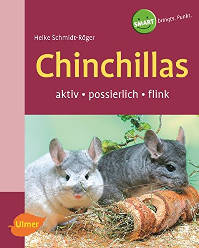 Chinchillas: Aktiv-possierlich-flink (SMART)